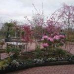 保内庭園の郷